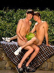 Two lovely teen boys have outdoor anal and oral sex